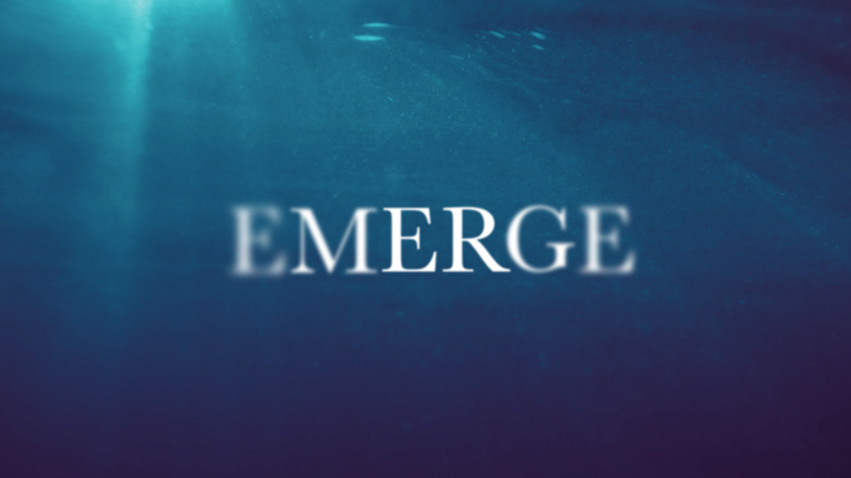 Teaching Series | Emerge